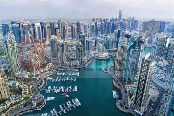 UAE granting visa to professionals